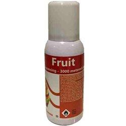 Luchtverfrisser navulling Fruit 12x100ml